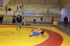 هفتمین دوره جشنواره کشتی نونهالان گزارش تصويري1